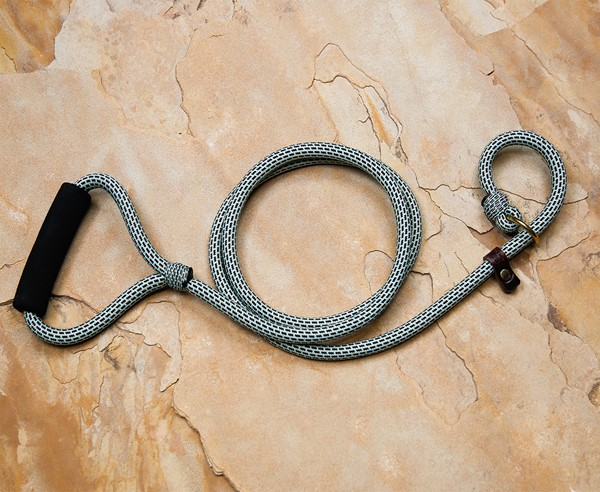 Alpine Quik-Hitch Lead